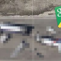 Google Maps Street View: Shock image of mystery plane crash revealed |...