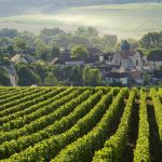 Travel: A fizzy trip to the champagne hills of France