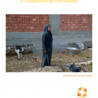 Resilient Market Systems Standards: A compendium for practitioners - W...